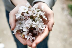 home remedies for cracked hands - hands with flower