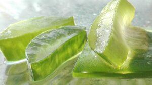 home remedies for hair fall - Aloe