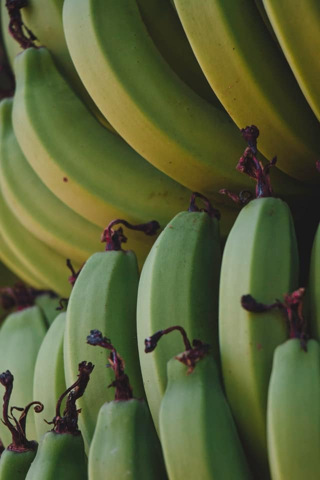 Is banana good for constipation? Green banana can have the opposite effect.