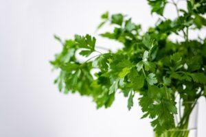 home remedies for eye stye - parsley