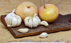 natural antibiotics - onion and garlic