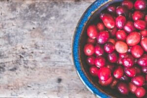 urinary tract infection - Cranberry